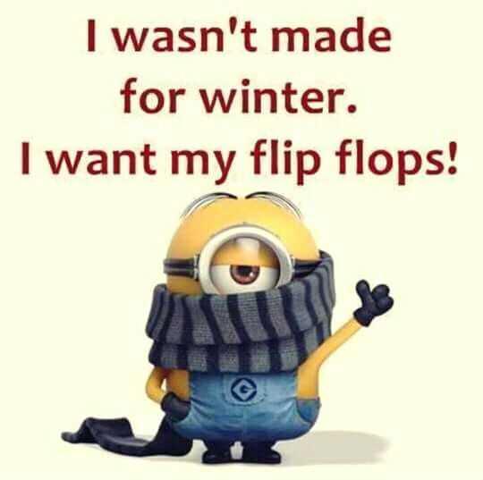Funny Minion Memes - Want Flip Flops