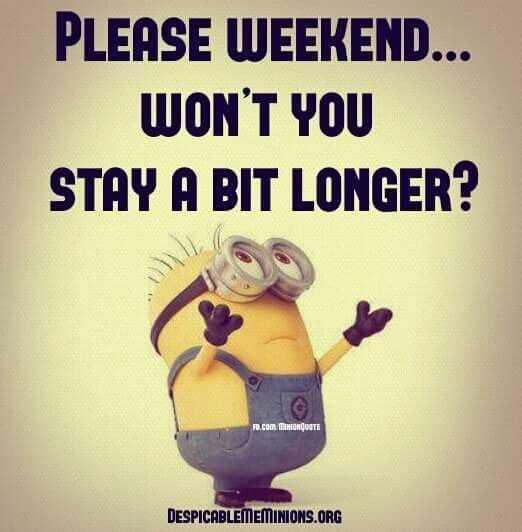 Funny Minion Memes - Praying To Weekend Gods