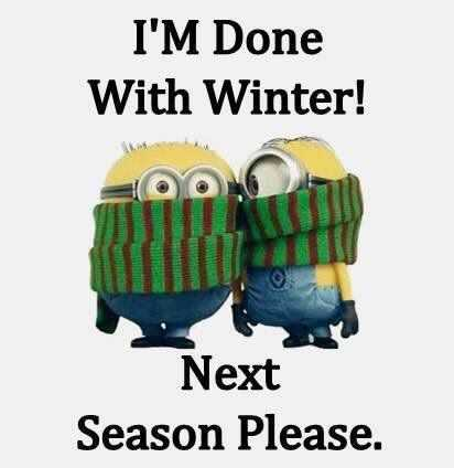 Funny Minion Memes - Moving Along With Seasons