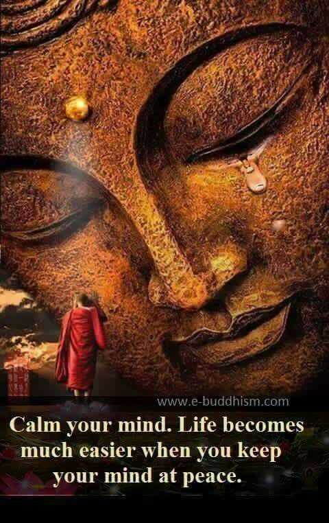 incredible quotes - life with calm mind is easier