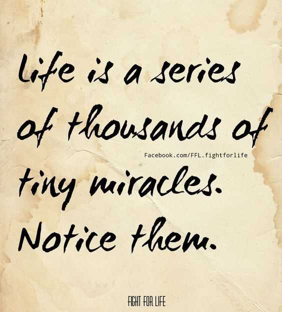 inspirational quotes about life - tiny miracles
