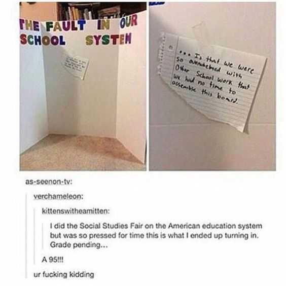 Hilarious Tumblr Post - school fault