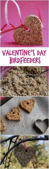 Valentine's Day Crafts - Birdfeeder