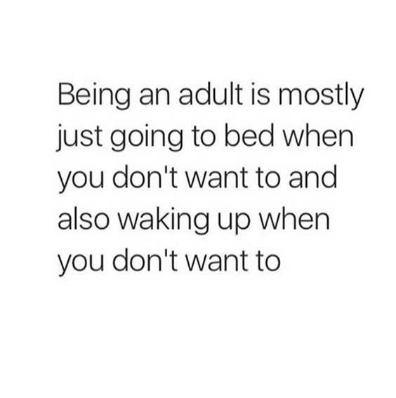 Being an adult memes - bed