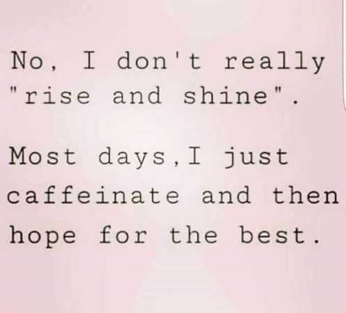 funny quotes about life in general - rise and shine