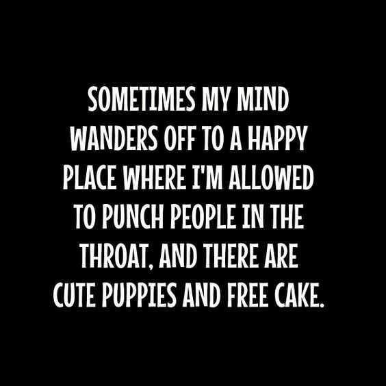 funny quotes about life in general - happy place