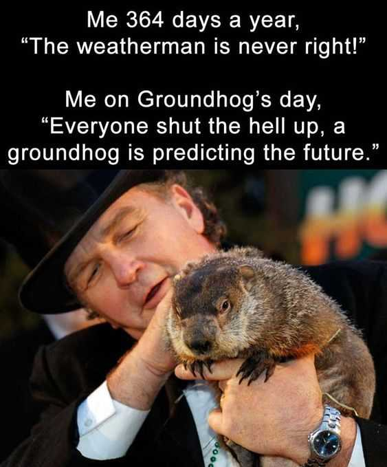 funny quotes about life in general - ground hog day