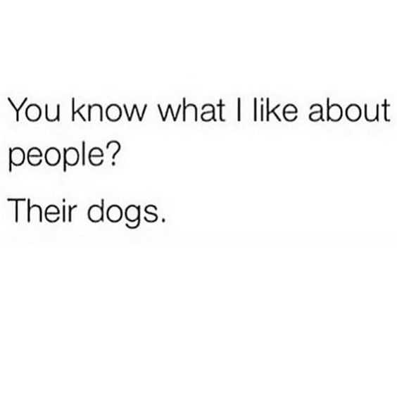 funny life quotes - dog lovers