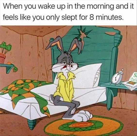 funny images clean - mornings