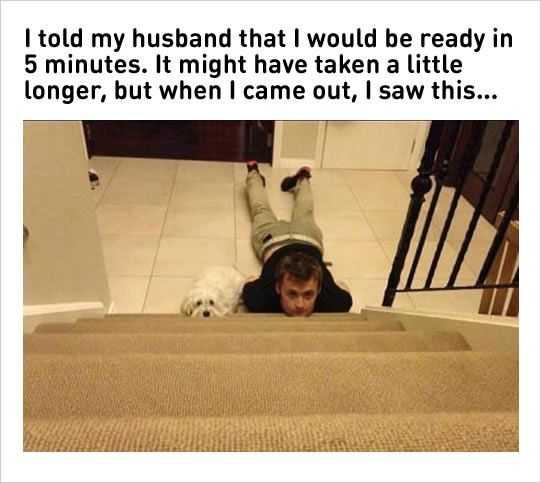 Hilarious Marriage Memes - husband and dog