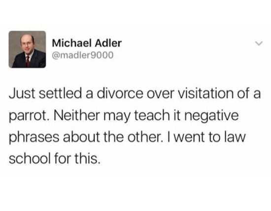 Funny Marriage Meme - divorce