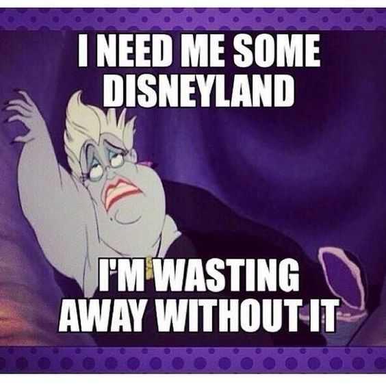 disney memes funny - need some disneyland