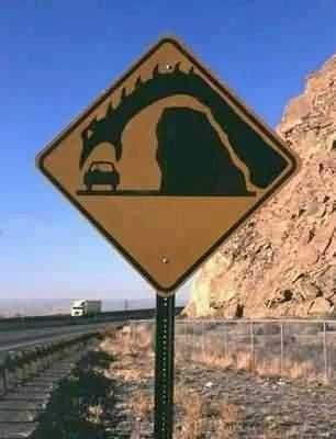 funny signs - dragons