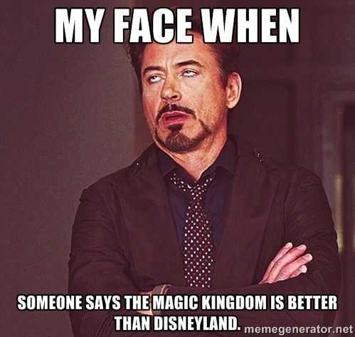 disney memes funny - magic kingdom vs disney