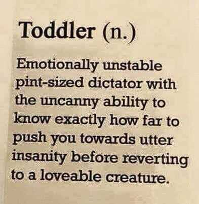 Funny quote about life - toddler