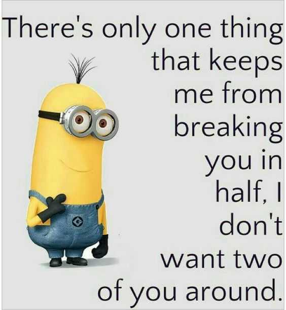 Minion quotes funny jokes - two of you