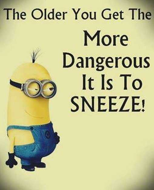 Great Minion Quotes - sneezing