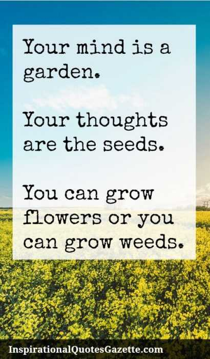 New Inspirational Quotes - mind garden
