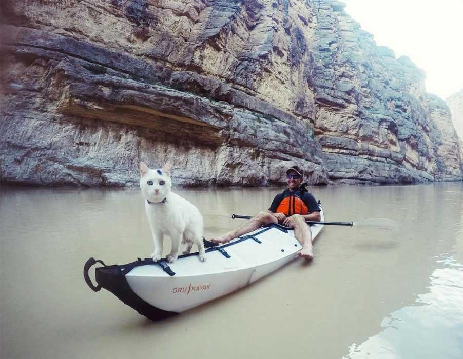 Photogenic Cat - kayaking