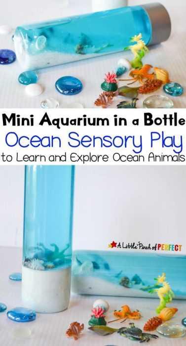Sensory Bottles Project