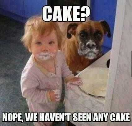Funny Kid Pictures - what cake?