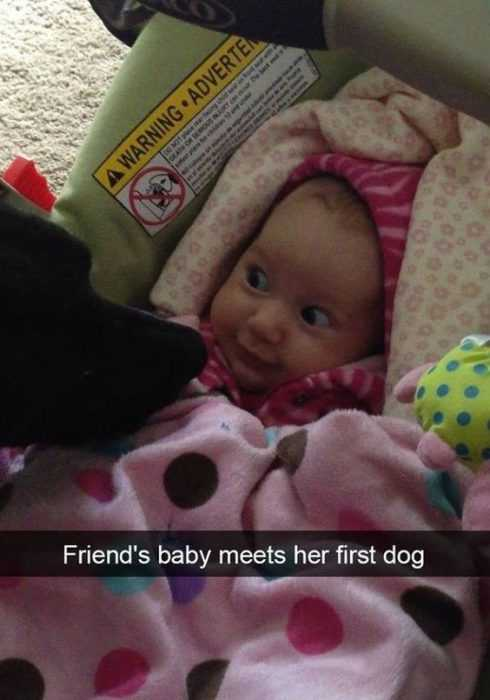 Funny Kid Pictures - baby meeting dog for first time