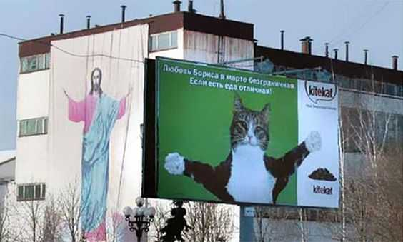Funny Sign placement meme - holy cat