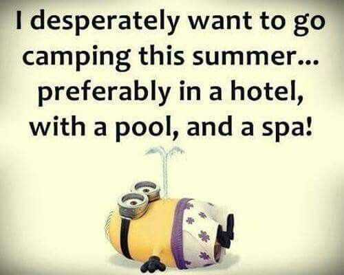 Super Funny Minion Quotes - Camping