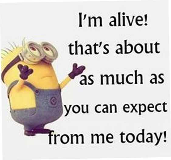 Sarcastic Minion Quote - Alive