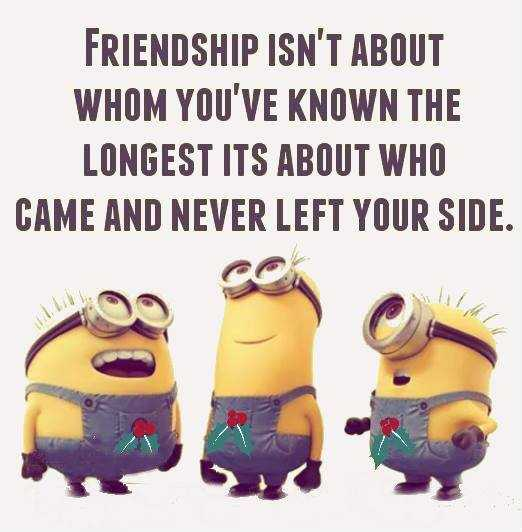 Minion Wisdoms - Friendship