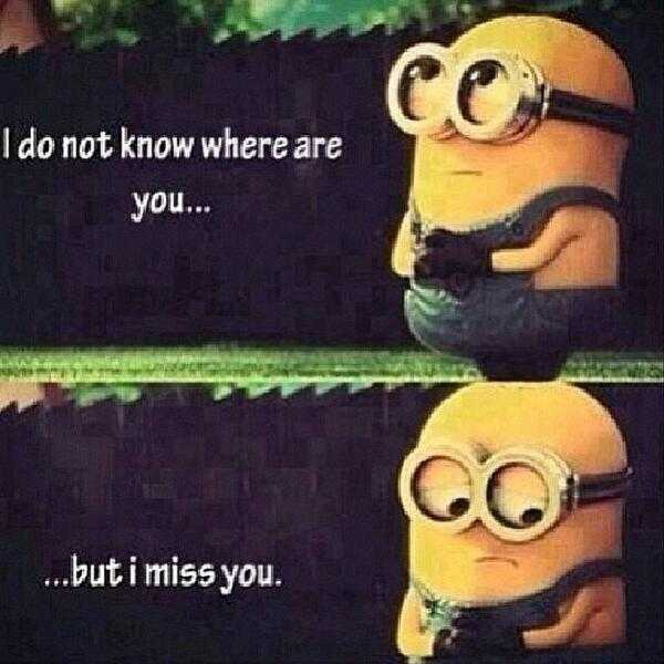 Funny Minion Quotes - Miss You