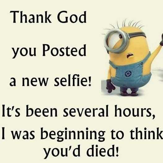 Minion Wisdom Quotes - Selfies