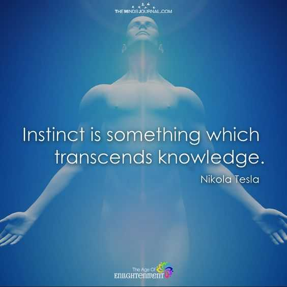 Empowering Quote - Instinct