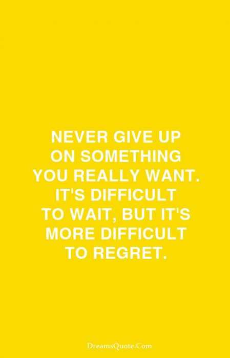 Beautiful Quotes About Life - never give up