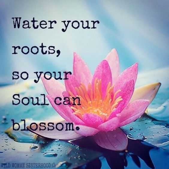 soulful quotes - roots