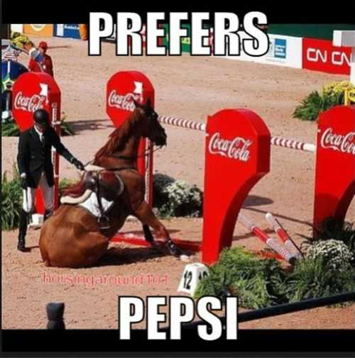 sweet funny animal pictures - pepsi challenge