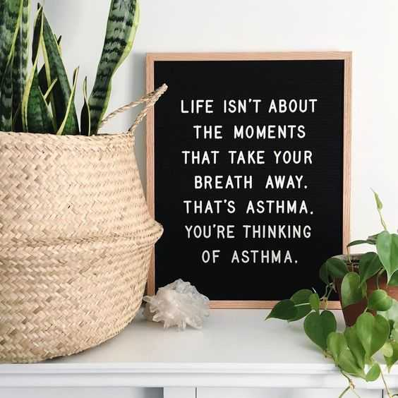 hilarious letterboard quotes 1