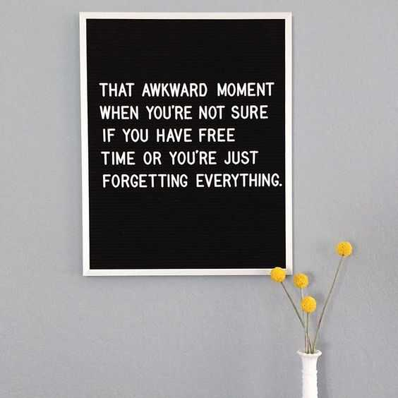 hilarious letterboard quotes 2