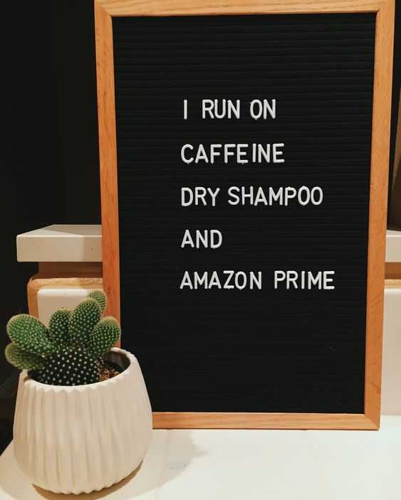 hilarious letterboard quotes 11
