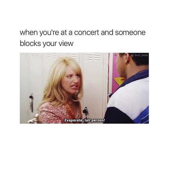 hilarious and funny memes - concert problems