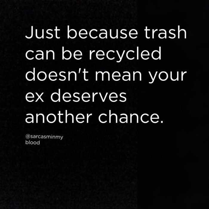 Snarky Funny Quotes - Trash