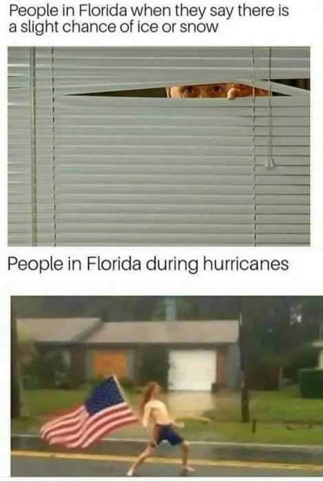 hilarious and funny memes - staying alive in Florida