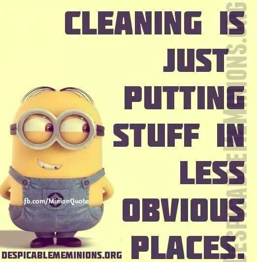 Snarky Funny Quotes - Cleaning