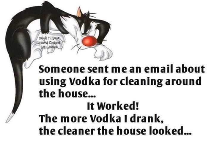Snarky Funny Quotes - Vodka