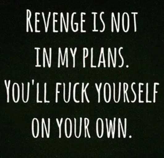 snappy quotes - revenge
