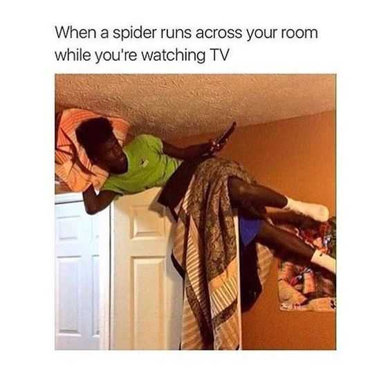 hilarious and funny memes - just gotta adapt
