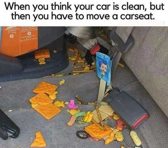 24 Funny Pictures about Spring Cleaning - what's under the carseat