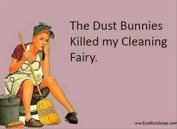 24 Funny Pictures about Spring Cleaning - dust bunnies