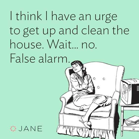 24 Funny Pictures about Spring Cleaning - false alarm