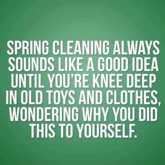 24 Funny Pictures about Spring Cleaning - spring cleaning realizations